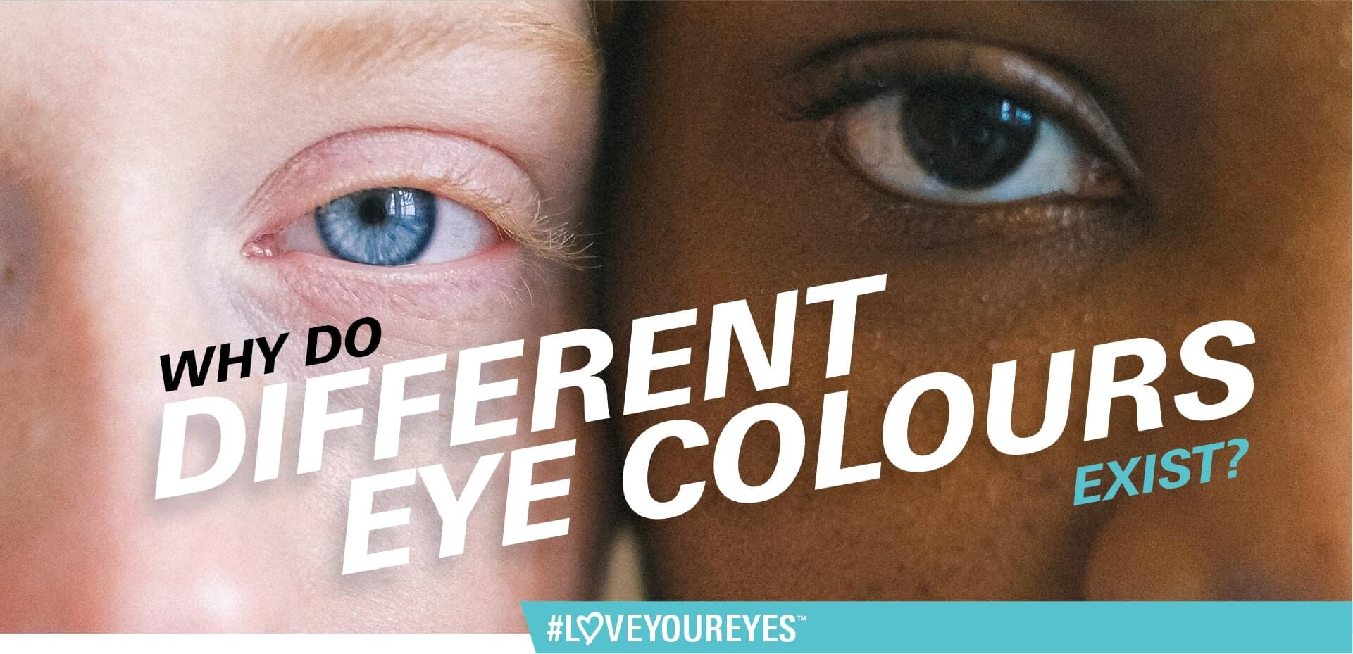 Why do different eye colours exist?