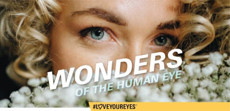 Wonders Of The Eye